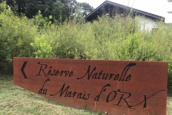 Arrano arrantzalearen berreskurapenerako proiektu berria hasi da Frantziako Landetan.